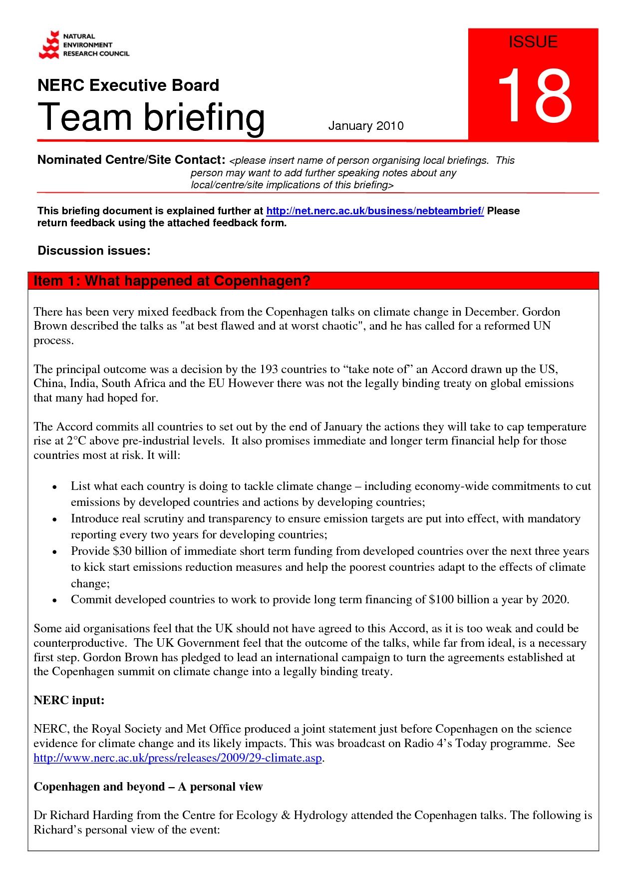 Executive Briefing Document Template Canasbergdorfbibco